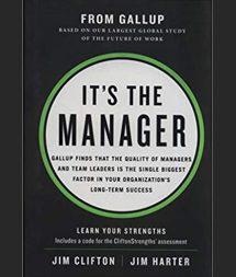 Its The Manager Book